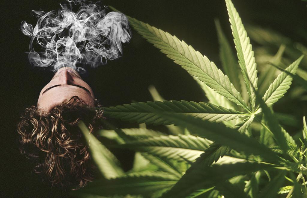 Как продлить действие марихуаны как вырастить коноплю самому